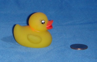 Small Yellow Flashing Duck